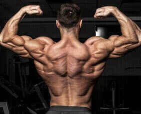 Breite hüfte mann bodybuilding