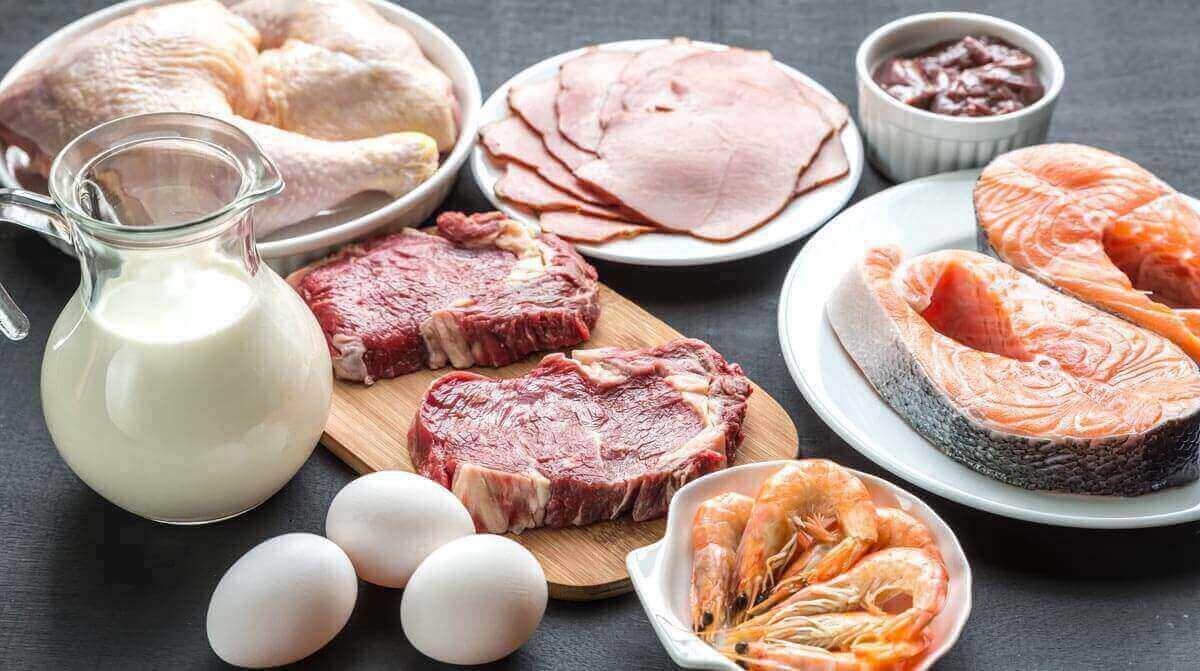 Alimentos com mais proteínas