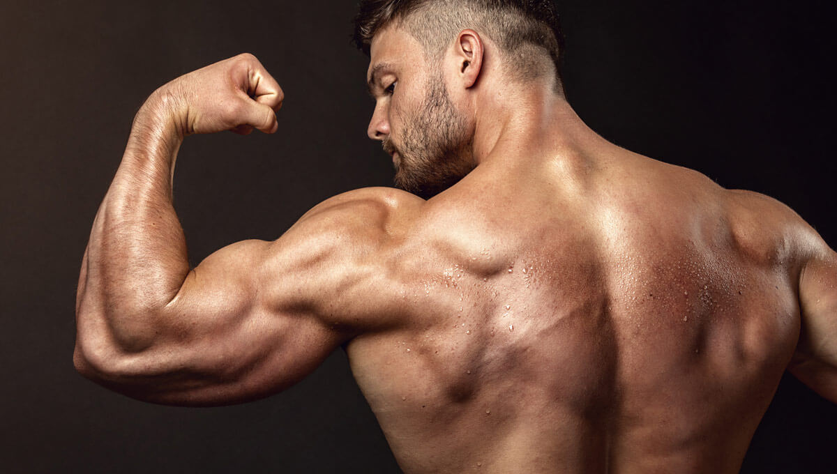 Are BCAA supplements a good choice  for increased strength?