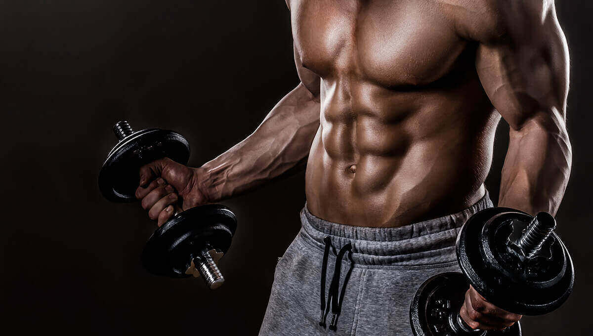 VEGETAL TESTOSTERONE? HERBS GOOD FOR THE BODY MASS AND MUSCLES. / NUTRITION