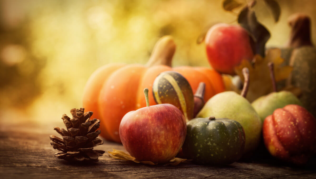 The autumn diet  - what is worth eating for your health?