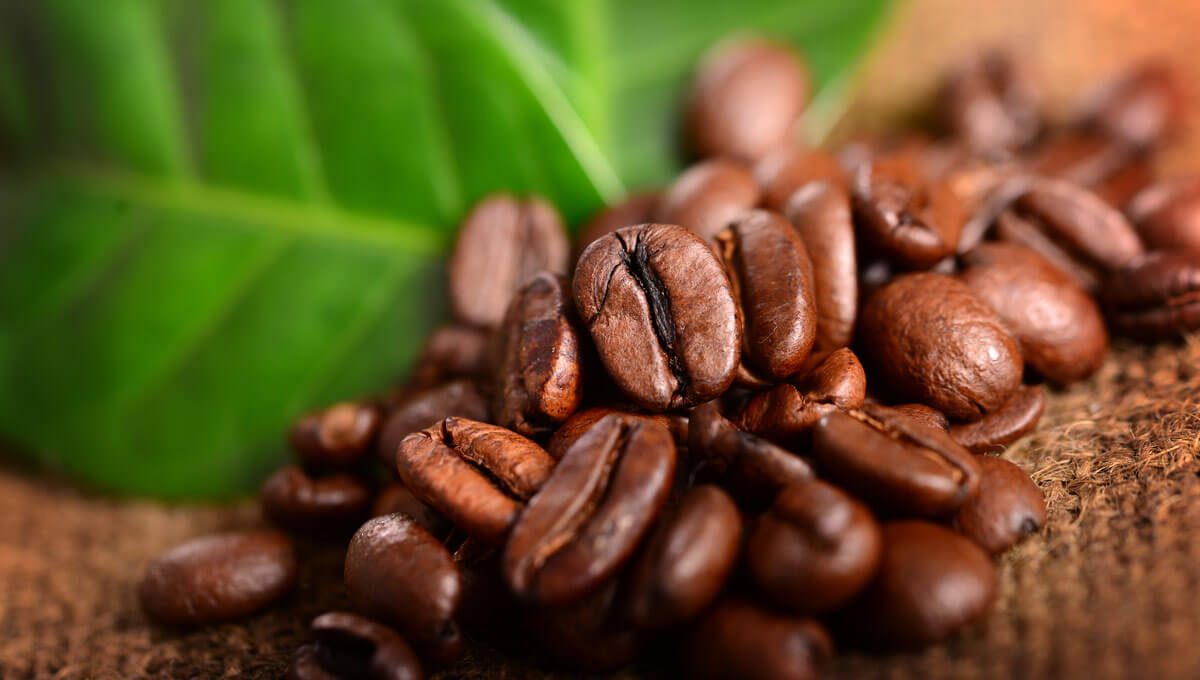 Caffeine and its role in training.  Discover the benefits of caffeine