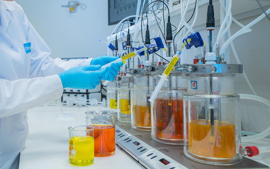 Différents types de créatine testés  sur un système digestif artificiel. Quel est le meilleur ?