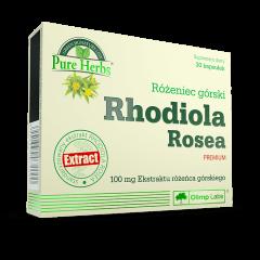 Rózeniec górski Rhodiola Rosea PREMIUM - 30 kapsułek - Olimp Laboratories