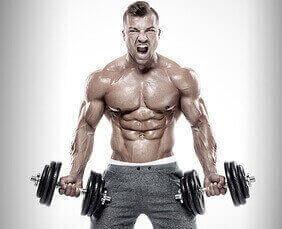 Wie wichtig  ist das Muskelversagen?