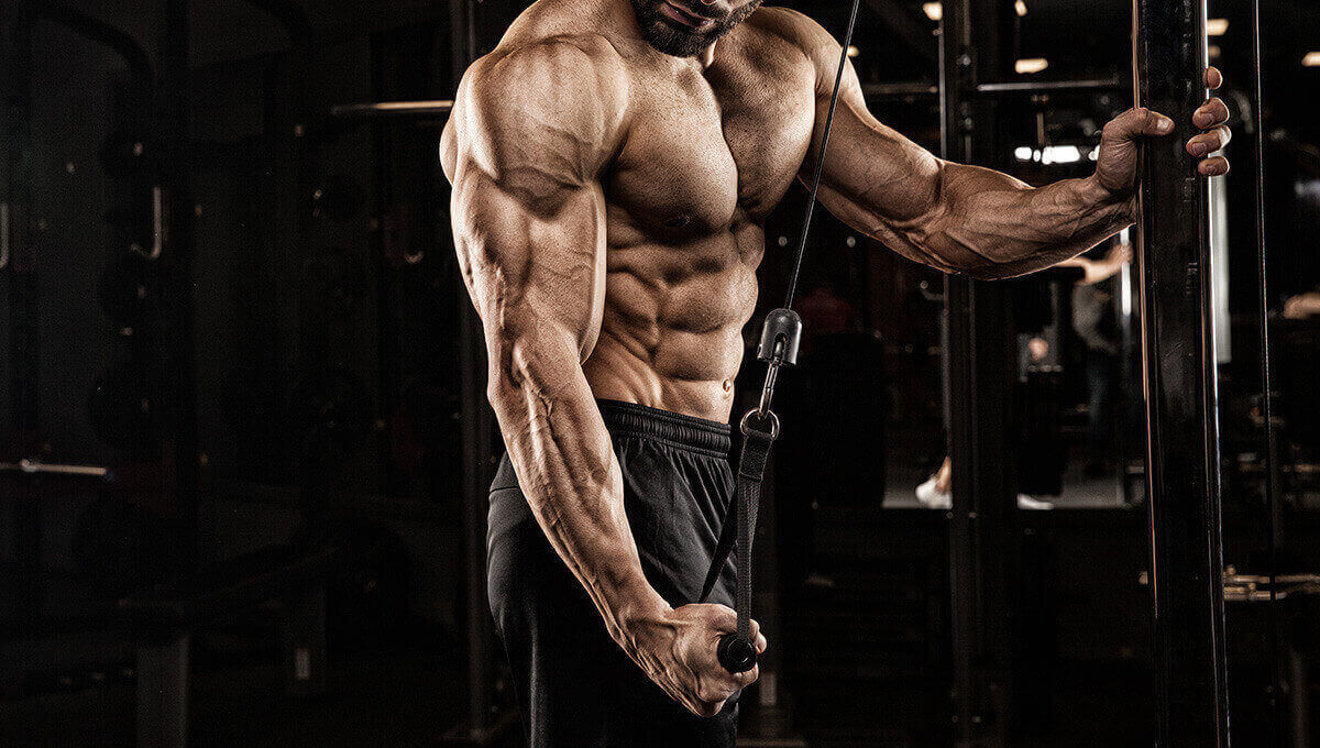 POWERFUL ARMS. TRAIN YOUR TRICEPS!