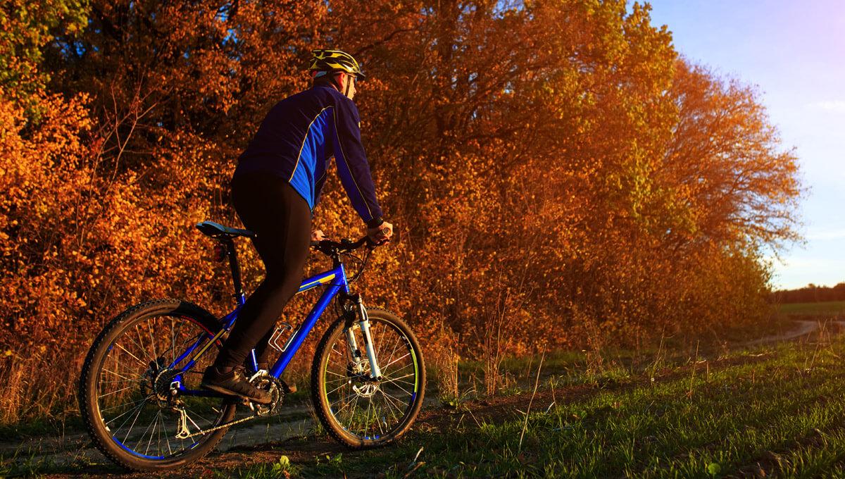 Dlaczego ruch i aktywność fizyczna  są tak ważne dla zdrowia?