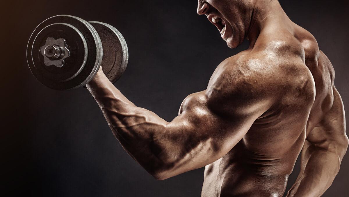 Hipertrophie-spezifisches Training.  Entdecken Sie die Vorteile dieser Trainingsmethode
