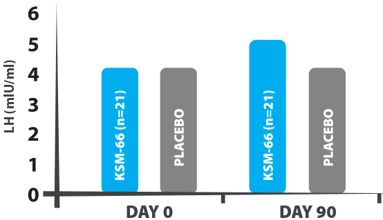 Wykres T-100 LTD