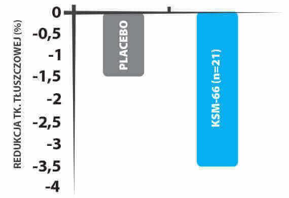 Redukcja tkanki tłuszczowej Wykres