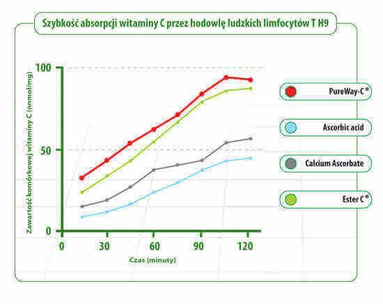 Szybkość absorbcji witaminy C wykres